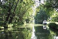 Un canale della Camargue