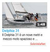 Delphia 31